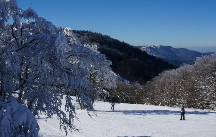 piste de ski dans les vosges