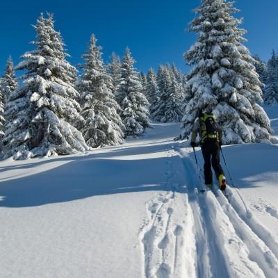 Ski de fond rouge gazon